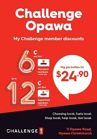 2021.036 Website - Christchurch - Opawa Garage Ltd 260953